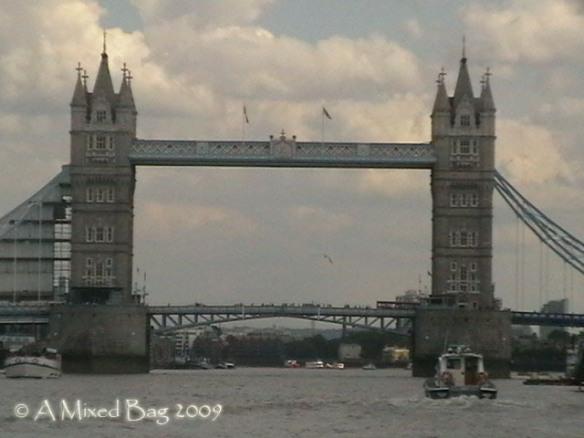 spf the bridge